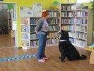 Grāmata un suns