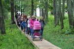 Ungurpils ezera krastā atklāts izzinošs vides objekts