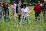 Alojā devīto gadu Vasaras saulgriežu gaisotnē Alojas novada pļaušanas svētkos spēkiem mērosies veiklākie un prasmīgākie izkapts pļāvēji