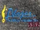 Informācija par Alojas Ausekļa vidusskolas skolas formām