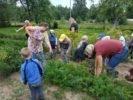 """Novada mazākie vāra zupu no PII """"Auseklītis"""" mazdārziņā atrodamajiem dārzeņiem"""
