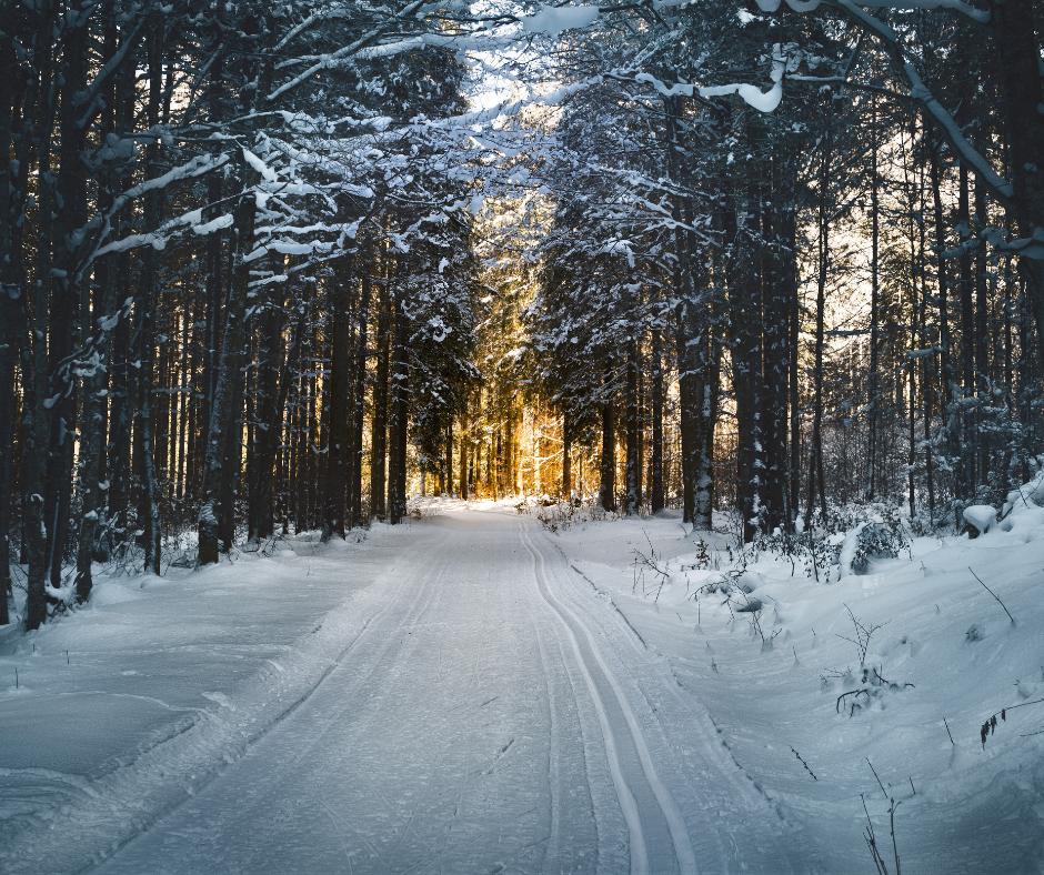 Iespējama bezmaksas slēpošanas inventāra noma