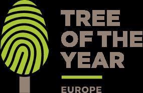 Balsojums par Eiropas Gada koku Latvijā sākas 2021. gada 6. septembrī